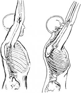 shoulder extension
